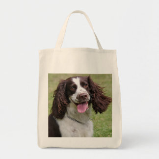 English Springer Spaniel dog beautiful photo, gift