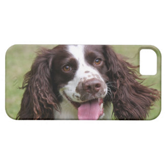 English Springer Spaniel dog beautiful photo, gift Case For The iPhone 5