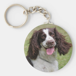 English Springer Spaniel dog beautiful photo, gift Keychain