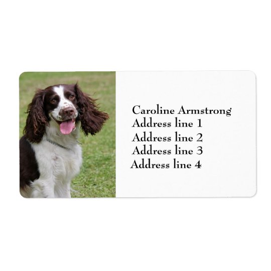 English Springer Spaniel dog custom address labels