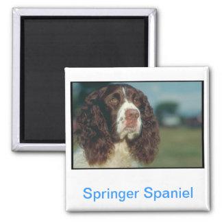 English Springer Spaniel Magnet