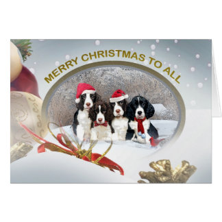 English Springer Spaniel Merry Christmas To All Card