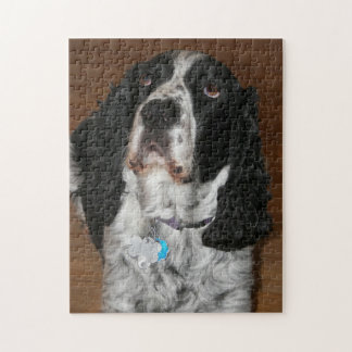 English Springer Spaniel Photo Jigsaw Puzzle