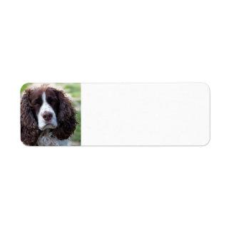english springer spaniel.png return address label