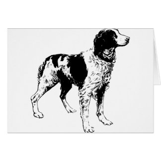 English Springer Spaniel  Sporting Pets Dogs Greeting Card