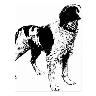 English Springer Spaniel  Sporting Pets Dogs Postcard