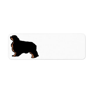 english toy spaniel black and tan silo