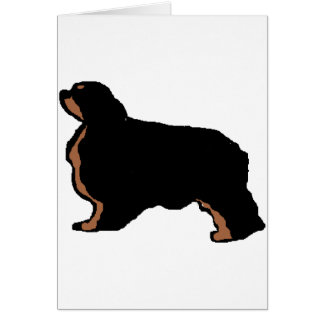english toy spaniel black and tan silo card