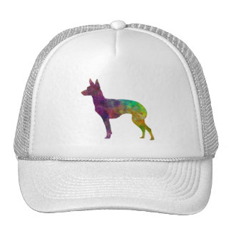 English Toy Terrier in watercolor Trucker Hat