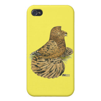 English Trumpeter Almond iPhone 4 Case