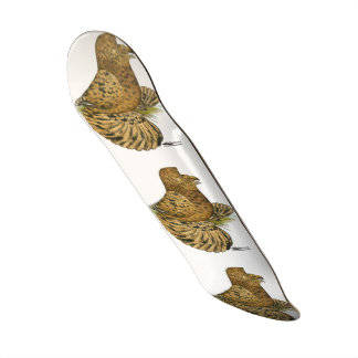 English Trumpeter Almond Skate Board Deck