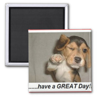 enjoy day magnet