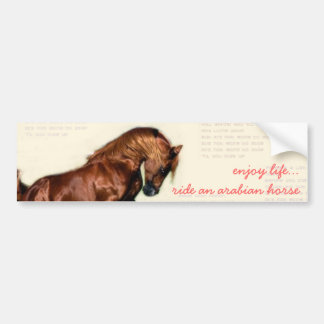 enjoy life...ride an arabian horse bumper sticker