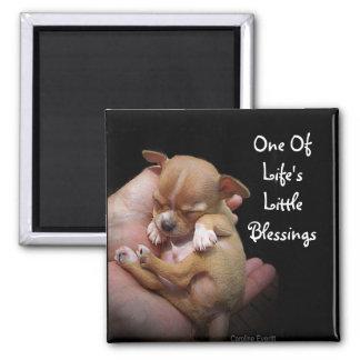 Enjoy Life s Little Blessings Refrigerator Magnet