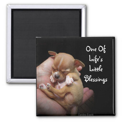 Enjoy Life's Little Blessings Refrigerator Magnet