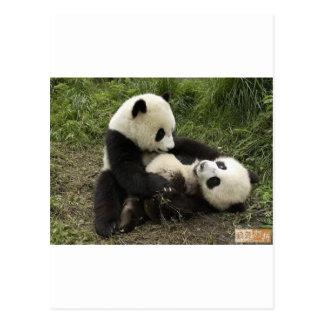 enjoy_panda_therapy_10 postcard