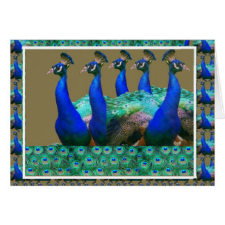 Enjoy:  PEaCOCK n Feathers Art Graphics Card