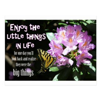Enjoy the Little Things in Life Postcard