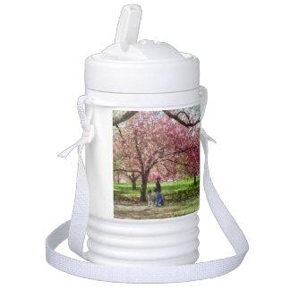 Enjoying the Cherry Trees Drinks Cooler