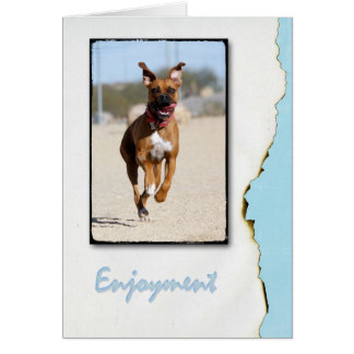 Enjoyment Card