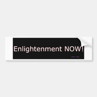 Enlightenment NOW! Bumper Sticker