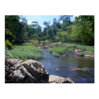Eno River, North Carolina Postcard