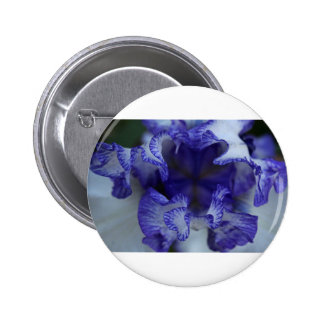 Entangled Wishes 2 Inch Round Button