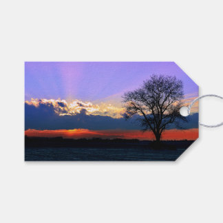 Enter Sunlight Pack Of Gift Tags