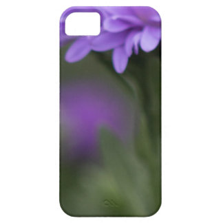 Enticement iPhone 5 Case
