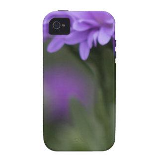 Enticement Case-Mate iPhone 4 Case