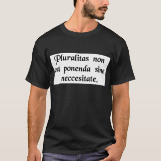 Entities should not be multiplied unnecessarily. T-Shirt