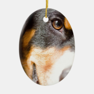Entlebucher - I've got My Eyes on You! Ceramic Oval Ornament