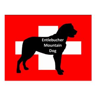 entlebucher mt dog name silo on switzerland flag p post cards