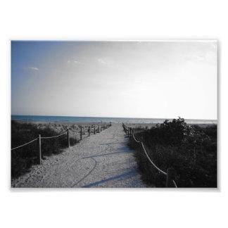 Entrance to the Beach Photo