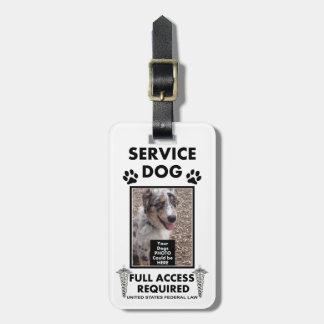 Entretenez la carte d'identité à photo de chien étiquette pour bagage