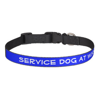 Entretenez le chien au travail (le milieu) colliers de chiens