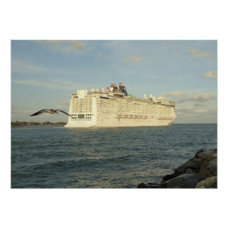 Epic Pursuit - Bird Following Cruise Ship Poster