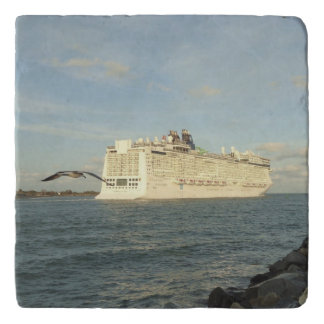 Epic Pursuit - Gull and Cruise Ship Trivet