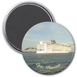 Epic Pursuit - Gull Follows Cruise Ship 3 Inch Round Magnet