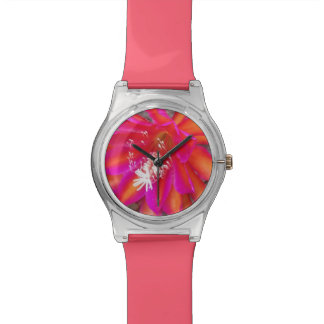 Epiphyte Bloom Watch