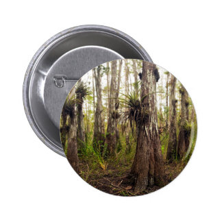 Epiphyte Bromeliad in Florida Forest 2 Inch Round Button