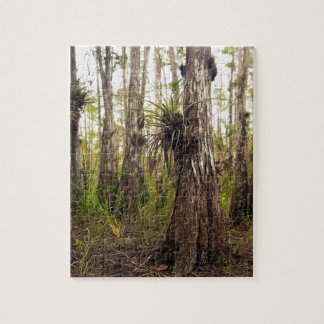 Epiphyte Bromeliad in Florida Forest Jigsaw Puzzle