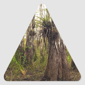Epiphyte Bromeliad in Florida Forest Triangle Sticker
