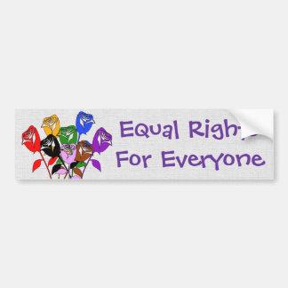 Equal Rights Bumper Sticker