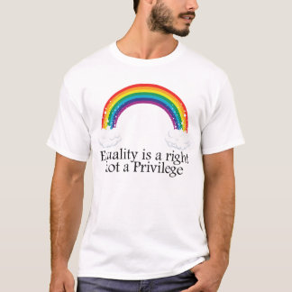 Equality is a right not a privilege T-Shirt