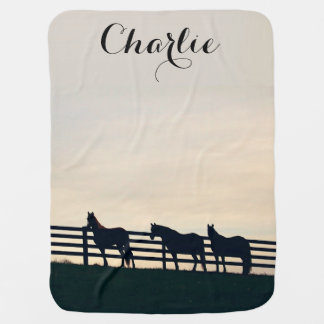 Equestrian Horses at the Pasture Fence Baby Blanket