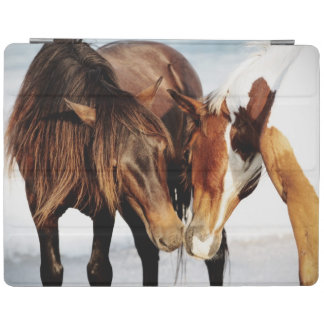 Equestrian Pony Love iPad Cover