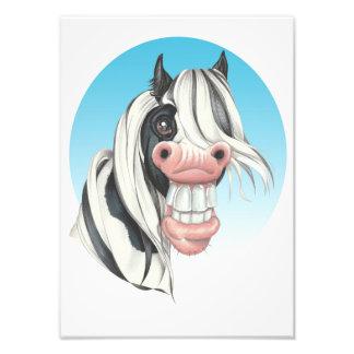 Equi-toons , 'Say Cheese!, Coloured Cob companion Photo Print