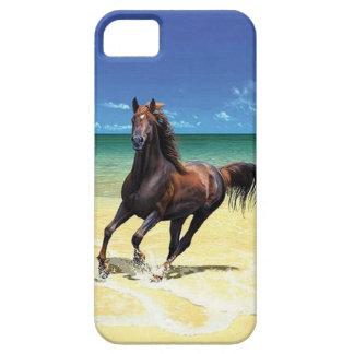 Equine Beach Beauty iPhone 5 Case