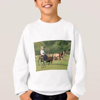 Equine Driving to Perfection Sweatshirt